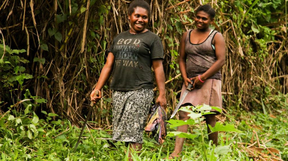 Vanuatu 2019, Teil 5: Port Sandwich, Malekula 02.-06. Juli